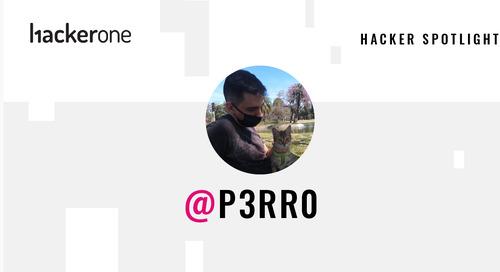 Hacker Spotlight: Interview with p3rr0
