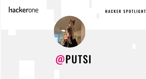 Hacker Spotlight: Interview with putsi