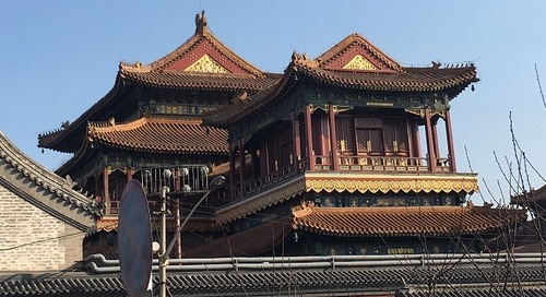 Teaching English in Beijing, China: Alumni Q&A with Shannon Cocci