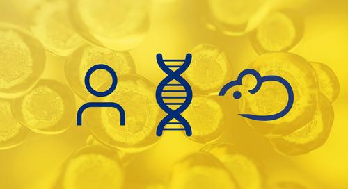 CD34+ Hematopoietic Stem Cell Humanized Mice: The Basics