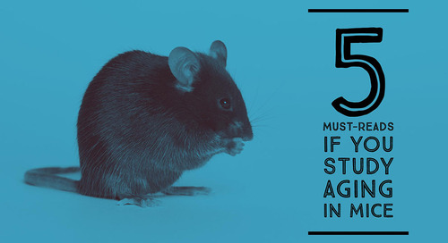 Five must-reads if you study aging in mice
