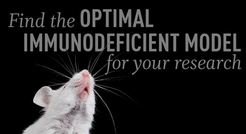 """Top Tips on Selecting the """"Best"""" Immunodeficient Mouse Model for Your Research"""
