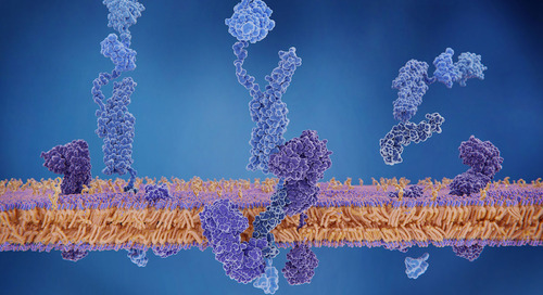 Moving beyond amyloid to treat Alzheimer's disease