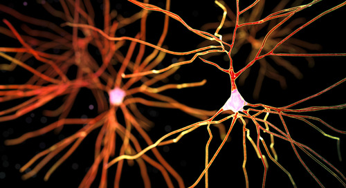 600 trillion synapses and Alzheimers disease