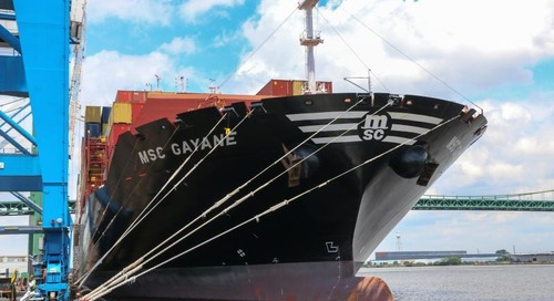 Delayed MSC cargo in transit as drug bust exposure expands