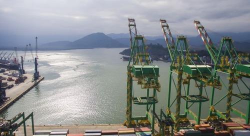 Brazilian cotton exports squeeze outbound ocean capacity