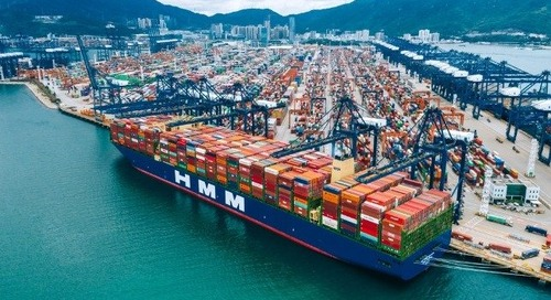 The Curious Case of Carrier Profitability - The Maritime Executive