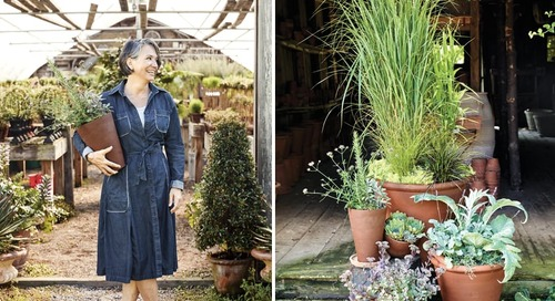 Stylish Fall Container Plantings