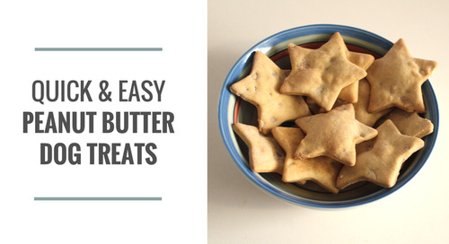 Comment on Quick & Easy Peanut Butter Dog Treats by Jee