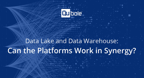 Data Lake and Data Warehouse: Can the Platforms Work in Synergy?