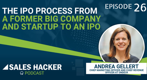 PODCAST 26: The IPO Process From a Former Big Company and Startup to an IPO w/ Andrea Gellert