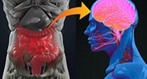 Gut instincts: unlocking your second brain