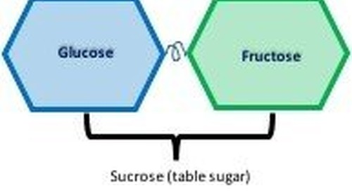 Don't waste your time and money on a fructose breath hydrogen test