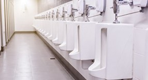 Here's why you have to pee all the time