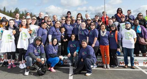 Walk MS 2015 a Success for the Swedish MS Walk Team
