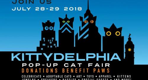Kittydelphia – A Pop-Up Cat Fair