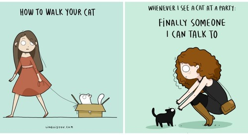 We Love These Out-Landysh Cat Illustrations