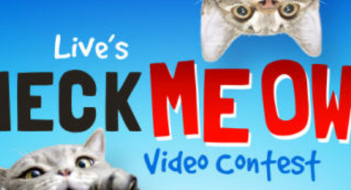 Cat Video Contest – 'Check Meow-T' with Kelly and Ryan