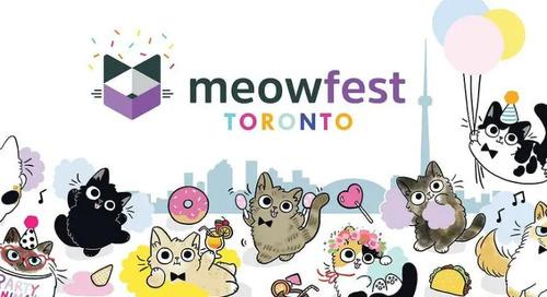 meowfest 2019 in Toronto