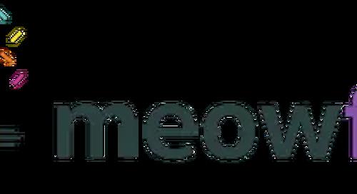 Meowfest – A Premiere Cat Festival