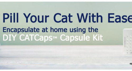 Giving Cats Medicine – A Smart Solution