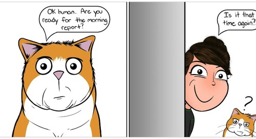 Cat Loving Comic Creator