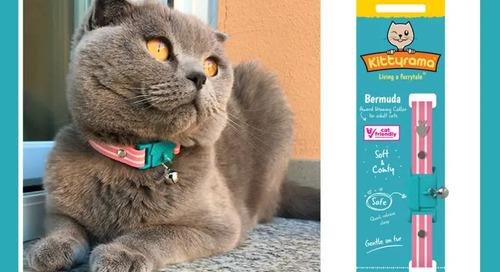 WIN a Kittyrama Designer Cat Collar
