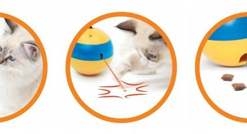 WIN a Catit Play Spinning Bee Cat Toy