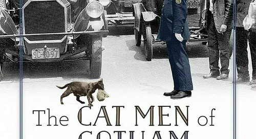 The Cat Men of Gotham