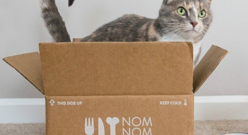 NomNomNow Delivers Fresh Cat Food Direct to Your Door