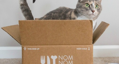 NomNomNow Delivers Fresh Cat Food Direct to Your Door