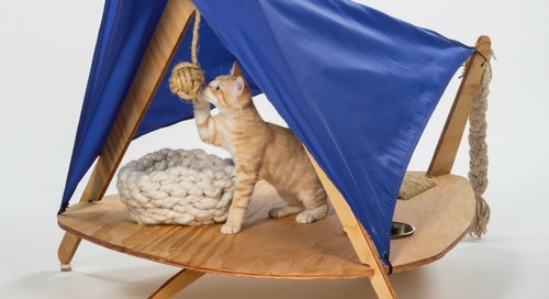 """Architects for Animals – """"Giving Shelter"""" Exhibit for Cats"""