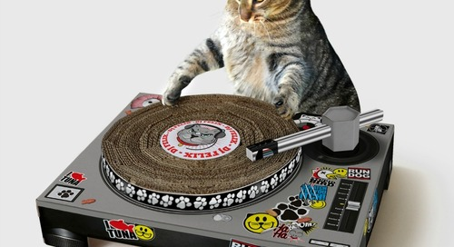 WIN this Cat Scratch Turntable
