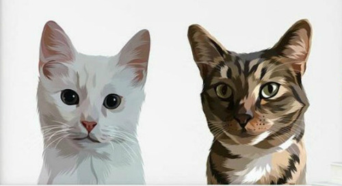 Get a Modern Portrait of Your Cat