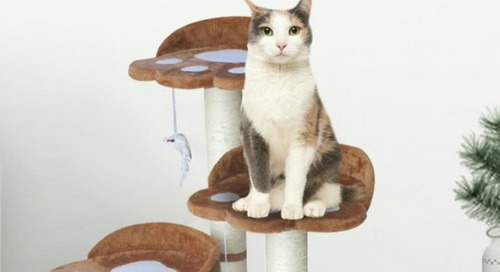 WIN this Climbing Tree from Cozy Cat Furniture