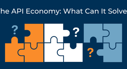 The API Economy: What Can it Solve?
