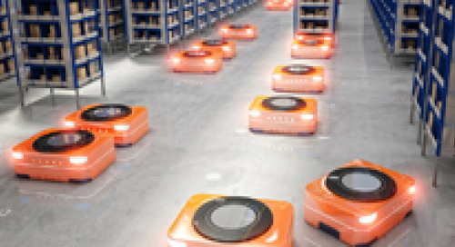 Supply Chain Warehouses are Falling in Love...with Robots